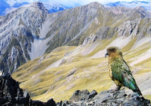 Exklusive 19 Tage Rundreise: Natur hautnah erleben